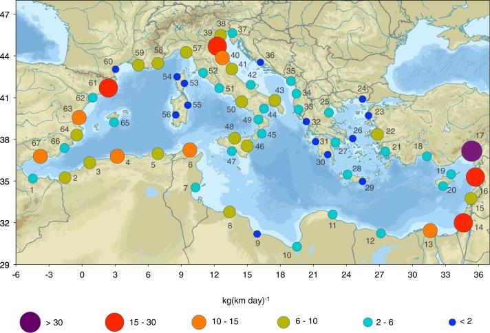 Akdeniz'de plastik atıklar en çok İtalya ve Türkiye kıyılarında