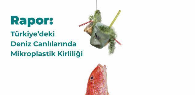 Grubumuz tarafından Greenpeace için yapılan araştırmanın sonuçları yayınlandı: Plastikten kurtul oltaya gelme!
