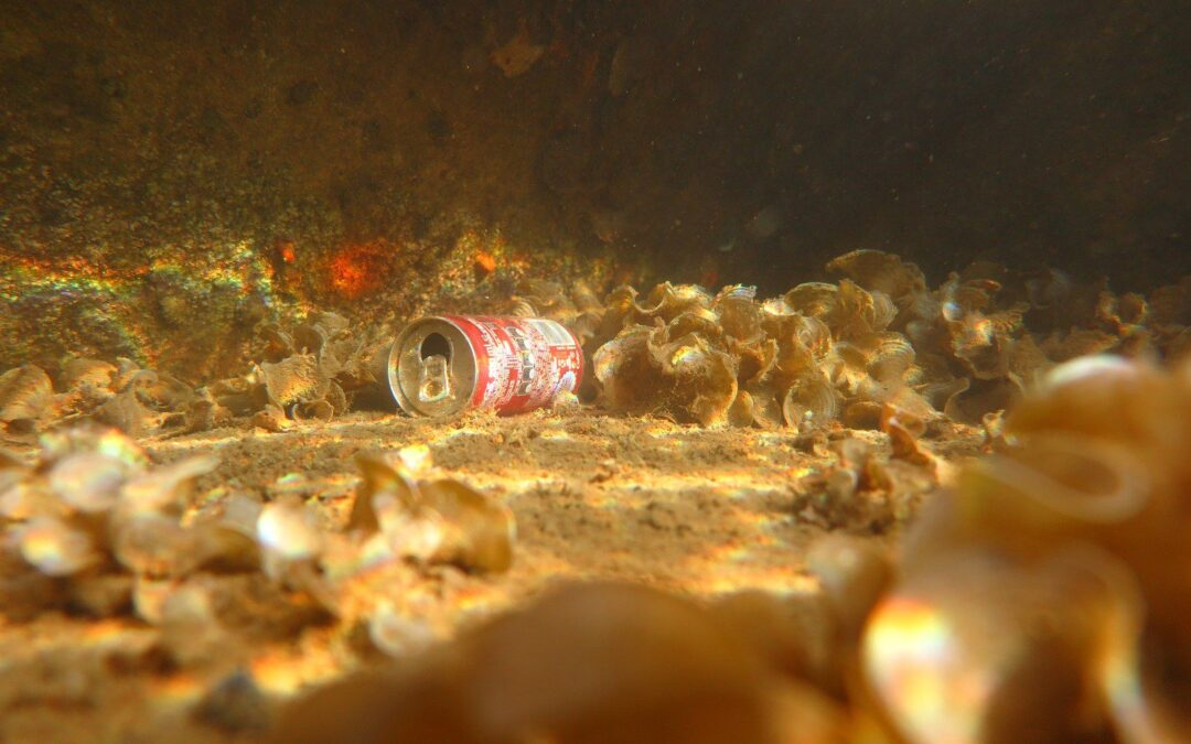 New Study: Single-use plastic items represent about 75% of the total benthic marine litter found in Iskenderun Bay