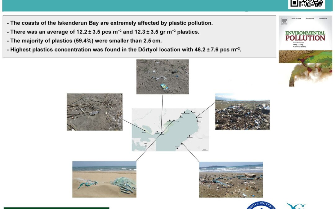 Mediterranean dirty edge: High level of meso and macroplastics pollution on the Turkish coast