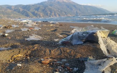 New article: Why Turkey should not import plastic waste pollution from developed countries?